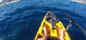 Attaqué par un requin, ce kayakiste ne pêchera plus en mer