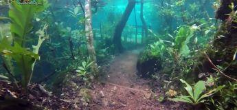 Les inondations au Brésil ont transformé un sentier naturel en un monde fantastique surréaliste