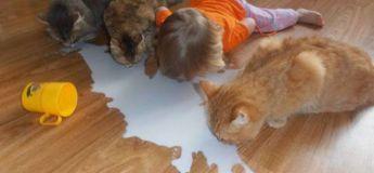 On est toujours sûr de s'amuser avec les enfants, voici 32 exemples !