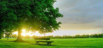 Sept choses qui nous font (encore) croire à un monde merveilleux