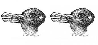 La perception d'une image qui en dit long sur le fonctionnement d'un cerveau