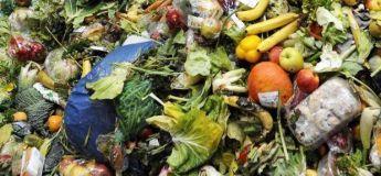 La France est le premier pays à obliger tous les supermarchés à donner de la nourriture invendue pour éviter tout gaspillage alimentaire