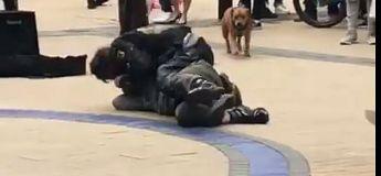 Ivres, deux hommes se battent en pleine rue et se font séparer par un chien