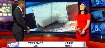 Les ratés des journalistes TV (vidéo avril 2018)