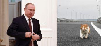 Un chat bat Poutine dans la première traversée du controversé pont de Crimée