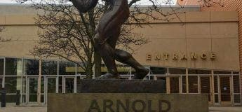 Mythe : Il n'y avait pas de chambre d'hôtel libre pour Arnold Schwarzenegger, alors il a dû passer la nuit à la belle étoile près de sa propre statue