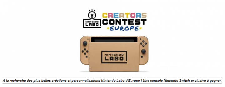 concours de cr ations nintendo labo europ en. Black Bedroom Furniture Sets. Home Design Ideas