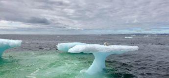 Des pêcheurs sauvent un renard polaire prisonnier sur un iceberg à la dérive