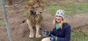 Journaliste, un métier dangereux, surtout quand le lion attaque !