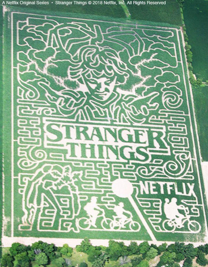 Stranger Things : Netflix annonce une troisième saison