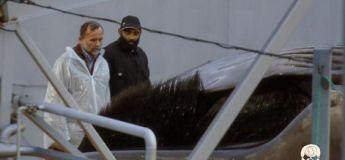 Kristján Loftsson, le millionnaire tueur de baleine
