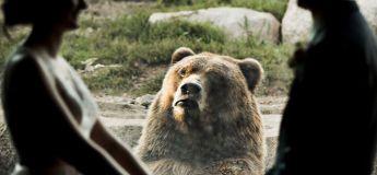 La réaction de l'ours face à ce couple qui s'est marié dans le zoo a rendu leur photo de mariage populaire