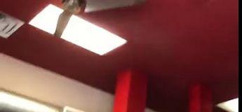 Une personne craque le plafond de ce restaurant