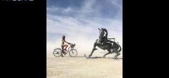 Vidéo des moments les plus fous du Burning Man 2018