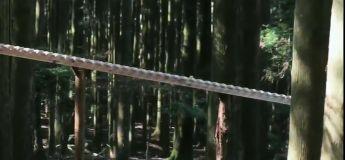 C'est génial ce qu'on peut faire avec du bois et un peu d'imagination musicale