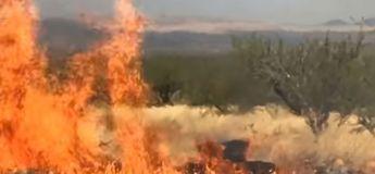 Un incendie provoqué par une baby shower réduit en cendres 20 000 hectares de forêt