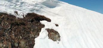 Cet ourson qui tombe presque au large de la falaise a plus de volonté que personne