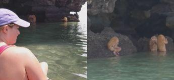 Ces créatures mystérieuses découvertes en Thaïlande vont vous donner la chair de poule!