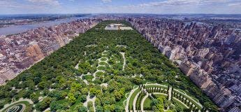 Un design différent de Central Park de New York proposé en 1958