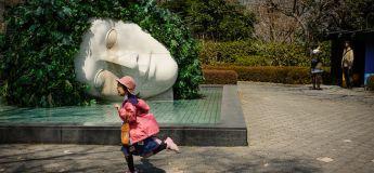 Des instants insolites et extraordinaires du Japon capturés en photos par Shin Noguchi