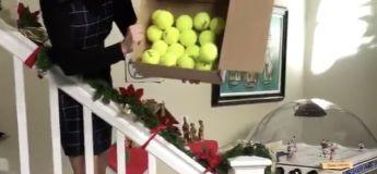 Noël : Elle offre à sa chienne des balles de tennis, et elle ne sait plus où donner de la tête