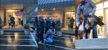 Vous devez voir la joie de ce chien policier de son rétablissement après avoir reçu 4 balles
