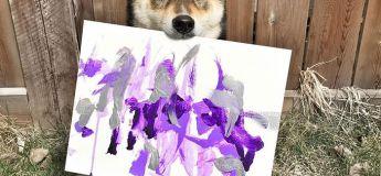 À la rencontre d'un chien qui peint des dessins abstraits