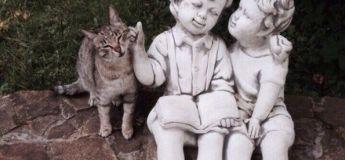 Les innombrables fois où l'on tombe sous les charmes du chat en images