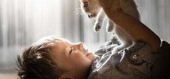 Le beau lien des chats avec son maître photographié dans de belles images