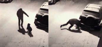 Il tente de donner un coup de pied à un chien, mais le karma se charge de lui