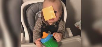 #CheeseChallenge Le nouveau défi des internautes avec la tranche de fromage sur la tête des bébés