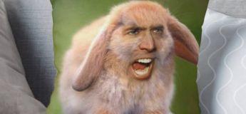 Vous pouvez désormais vous offrir des oreillers avec la photo de Nicolas Cage !