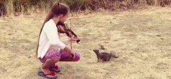 Vous n'allez pas croire la réaction de cet écureuil quand il a entendu la musique que cette fille jouait pour lui