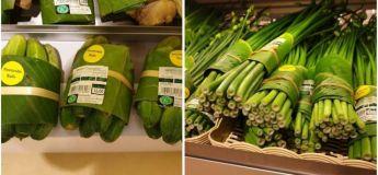 Voici quelques alternatives fantastiques aux emballages plastiques :