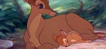 La raison touchante pourquoi tant de mamans meurent dans les films de Disney