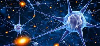 7 habitudes à adopter pour un cerveau en bonne santé