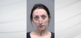 Une femme a pénétré par effraction dans une maison, caresse le chien, fait la vaisselle et est partie