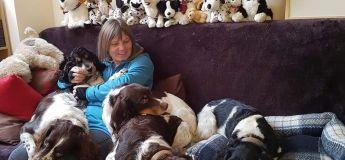 Cette femme crée un Airbnb pour chiens et les gens pensent qu'elle est folle