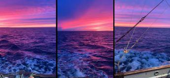 Prenez un moment pour savourer cette vue à couper le souffle : le plus beau coucher de soleil que vos yeux peuvent voir