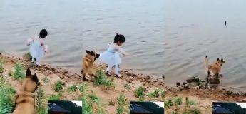 Que ce soit un animal ou un être humain, l'instinct des mamans est toujours présent