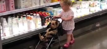 Cette petite fille fait ses courses comme une grande (Vidéo)