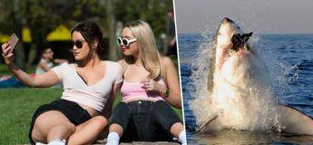 Les selfies sont cinq fois plus meurtrières que les attaques de requins