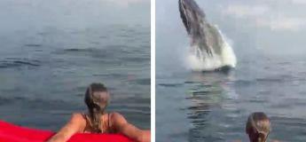 Cette fille voit une baleine surgir à seulement quelques mètres d'elle