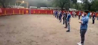 Voici une vidéo montrant que les taureaux n'attaquent qu'en cas de menace