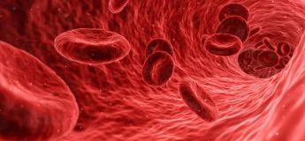 Un test sanguin permettant de prédire la mort aurait été mis au point