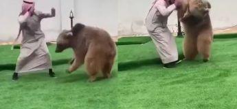 Ce n'est pas ce que vous pensez, c'est juste un homme qui joue avec son ours