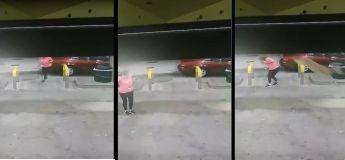 Un cerf saute au dessus d'une femme en lui donnant des coups de pied à la tête