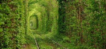 Ces photos démontrent à quel point la Nature peut être plus forte que les humains
