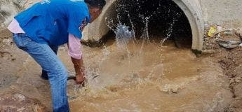 Ce sauveteur n'hésite pas à s'engouffrer dans un égout pour capturer un cobra royal