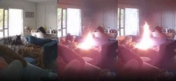 Un chiot utilise un briquet comme jouet à mâcher et a mis le feu sur le canapé